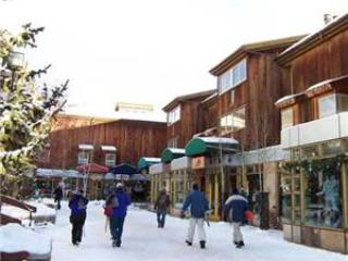 Lionshead Center #201 - Vail vacation rentals