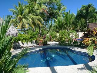 Beachfront rustic luxury villa, pool, gazebo, BBQ, hammocks, WiFi, sleeps 4-8 - Jaco vacation rentals