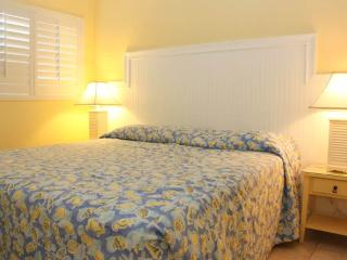 #333 at Surf Song Resort - Madeira Beach vacation rentals