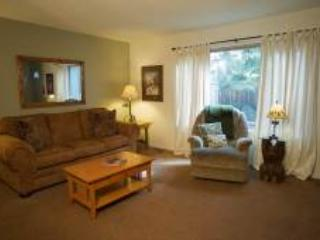 Lake Forest Glen 109 - Tahoe City vacation rentals