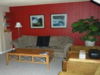 Lake Forest Glen 226 - Image 1 - Tahoe City - rentals