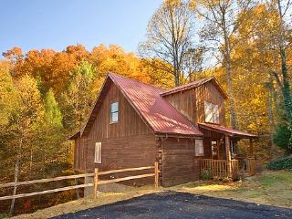 Enchanted Forest - Sevierville vacation rentals