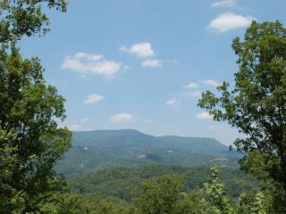 Falcon's View - Sevierville vacation rentals
