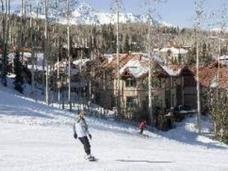 PINE MEADOWS 138 - Telluride vacation rentals