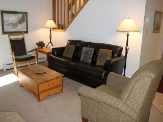 CC206 Amazing Condo w/ Wifi, Fireplace, Clubhouse, 2 Blocks Off Main St. - Frisco vacation rentals
