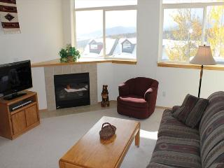 FP21C Cute Townhome w/ Wifi, Fireplace, Pet Friendly, Garage, Private Hot Tub - Silverthorne vacation rentals