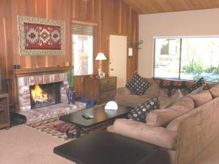 Incline Village 3 BR-2 BA Condo (17FP) - Incline Village vacation rentals