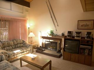 Picturesque Condo with 3 Bedroom/2 Bathroom in Incline Village (79FP) - Incline Village vacation rentals