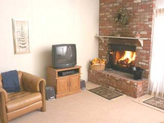 Picturesque Condo with 2 Bedroom/2 Bathroom in Incline Village (91MS) - Incline Village vacation rentals