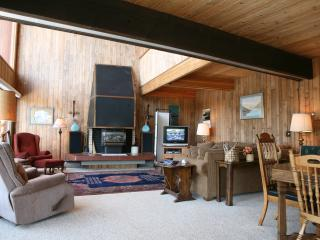 Snowshoe House: PET FRIENDLY, spacious mountain cabin in Winter Park - Winter Park vacation rentals
