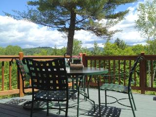Private Bartlett Log Home - WiFi - near StoryLand 37440 - Bartlett vacation rentals