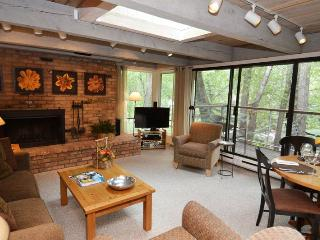 ChEau7 - Aspen vacation rentals