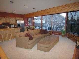 Dur3-D - Aspen vacation rentals