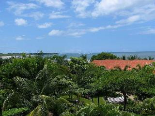 Lovely oceanview condo, with full kitchen, cable tv & shared pool - Tamarindo vacation rentals