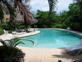 Relaxing beachfront townhome - central a/c, kitchen, shared pool - Tamarindo vacation rentals