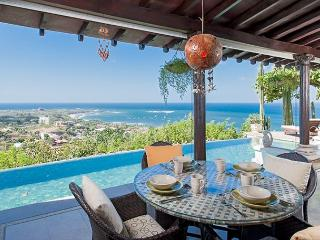Luxury villa- views, infiniti pool, close to beach, shopping and dining - Tamarindo vacation rentals