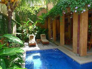 Lavish vacation villa-ocean view, kitchen, balcony, gas grill, internet, a/c - Tamarindo vacation rentals