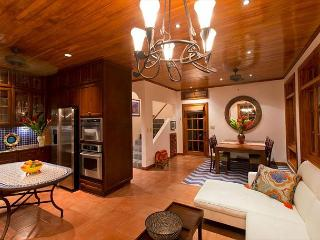 Exceptional vacation villa- near beach, cable, gas grill, private pool, a/c - Tamarindo vacation rentals