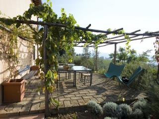 Charming Farmhouse Close to Florence and Walking Distance to Village - Ai Lecci - Rignano sull'Arno vacation rentals