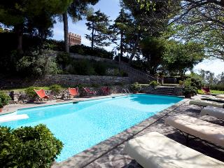 Luxury Castle in Southern Tuscany - Castello Granduca - Campiglia Marittima vacation rentals