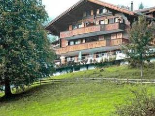 Apartment Rental in Bern, Grindelwald - Tiefes Tal - Grindelwald vacation rentals