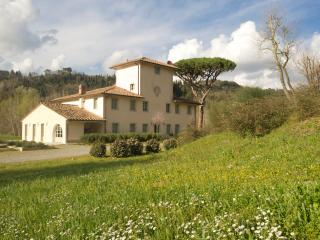 Luxury Villa in Tuscany with Pool - Villa Ampelio and Annex - Forcoli vacation rentals