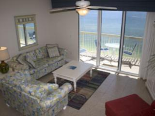 Celadon Beach 01406 - Image 1 - Panama City Beach - rentals