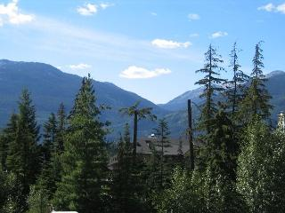 Recently upgraded,Beautiful Mt views, big hot tub in lodge,free parking, wifi - Whistler vacation rentals