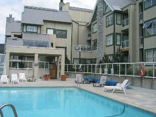 Cozy unit with firplace, nice big hot tub in complex, free parking & internet - Whistler vacation rentals