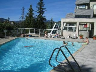 Close to lifts, free internet, parking, fully self contained 1 bdm condo - Whistler vacation rentals