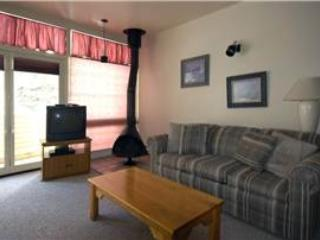 Completely remodeled studio condo, near the office - Condo 05 - Image 1 - Taos Ski Valley - rentals