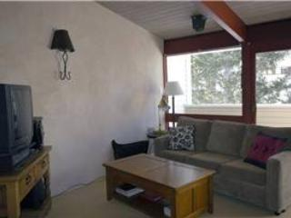 Exquisite 1BR, newly renovated feat. luxury shower - Condo 06 - Taos Ski Valley vacation rentals