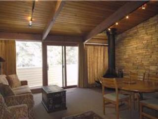2BR w/ guest suite & stainless steel appliances  - Condo 08 - Image 1 - Taos Ski Valley - rentals