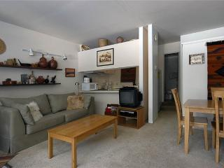 Comfortable 5BR w/ marvelous views from deck - Condo 29 - Taos Ski Valley vacation rentals