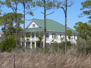 WATERBIRDW - Saint George Island vacation rentals