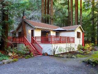 BOHEMIAN RHAPSODY - Russian River vacation rentals