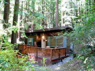 CAZADERO HEAVEN - Russian River vacation rentals