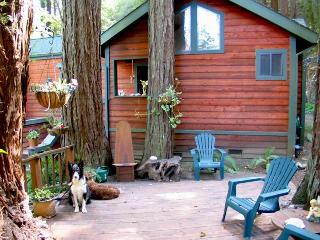 EUPHORIA - Russian River vacation rentals