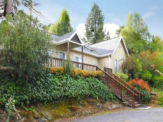 LAUGHLIN ESTATE - Russian River vacation rentals