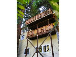MOM'S BEACH HOUSE - Russian River vacation rentals