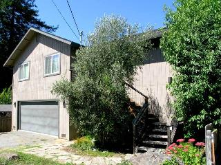 RISING STAR - Russian River vacation rentals