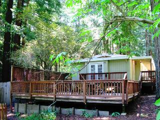 WAGGING WOODS - Sonoma County vacation rentals