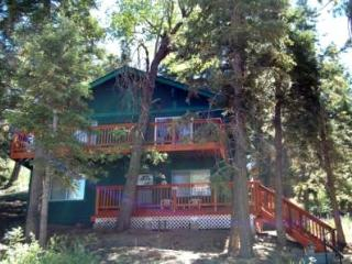 Brett's Surf Retreat #1064 - Big Bear Lake vacation rentals
