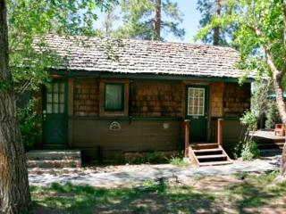 Lodge House #100 - Big Bear Area vacation rentals