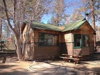 Lonepine #107 - Image 1 - Big Bear Lake - rentals