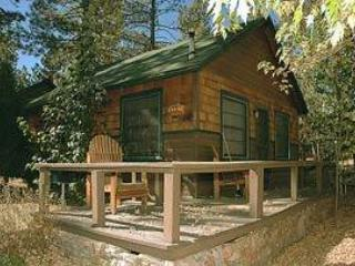 Lupine #106 - Big Bear Area vacation rentals