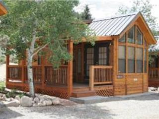 "Cozy ""Modular"" Style 1 BR with Sleeping Loft Cabin at Three Rivers Resort in Almont (#43) - Image 1 - Almont - rentals"