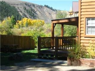 Modern 1 BR with Sleeping Loft Cabin on the Taylor River at Three Rivers Resort in Almont (#57) - Almont vacation rentals
