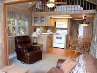Modern 1 BR with Sleeping Loft Cabin on the Taylor River at Three Rivers Resort in Almont (#64) - Almont vacation rentals