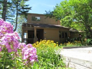 Eagle's Nest - Knightdale vacation rentals